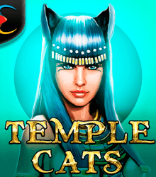 Temple Cats
